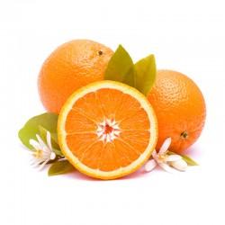 Premium Sinaasappelen